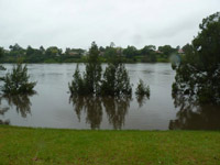 Nepean in Flood